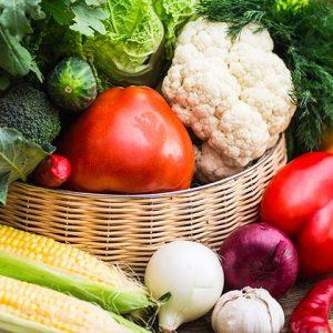 Bio-Vegane Gemüsekiste der PfalzBio