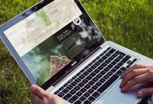 Blogbeiträge der PfalzBio Kandel